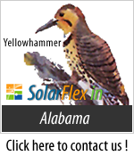 Solar In Alabama